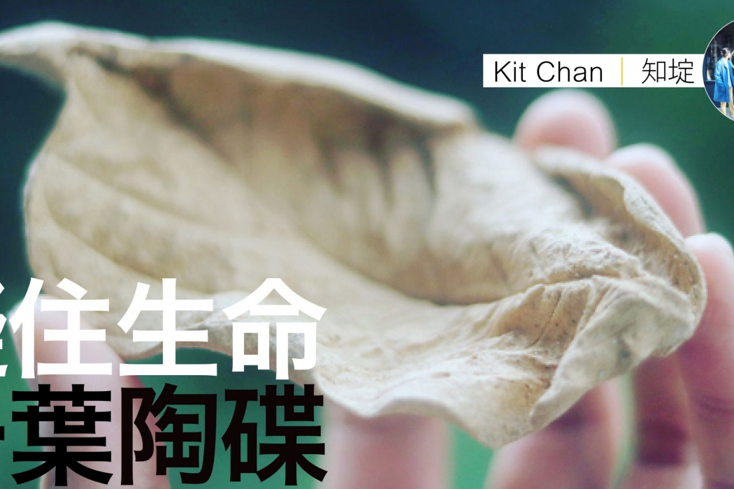 kit chan陶碟feature