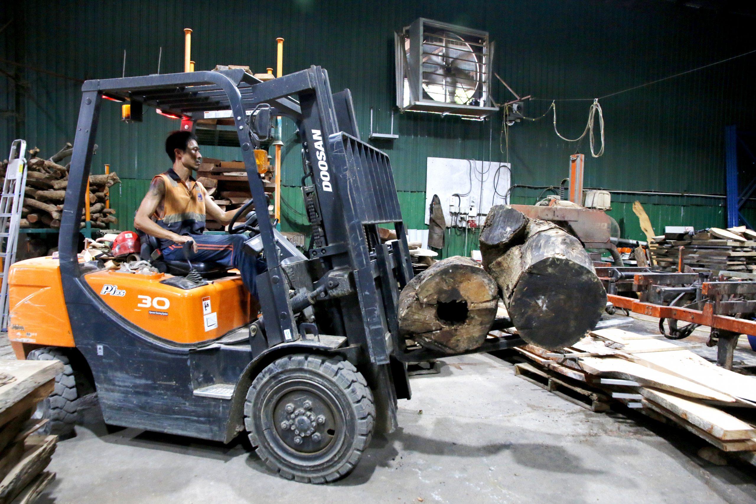 香港木庫 回收榻樹 造傢具 工場