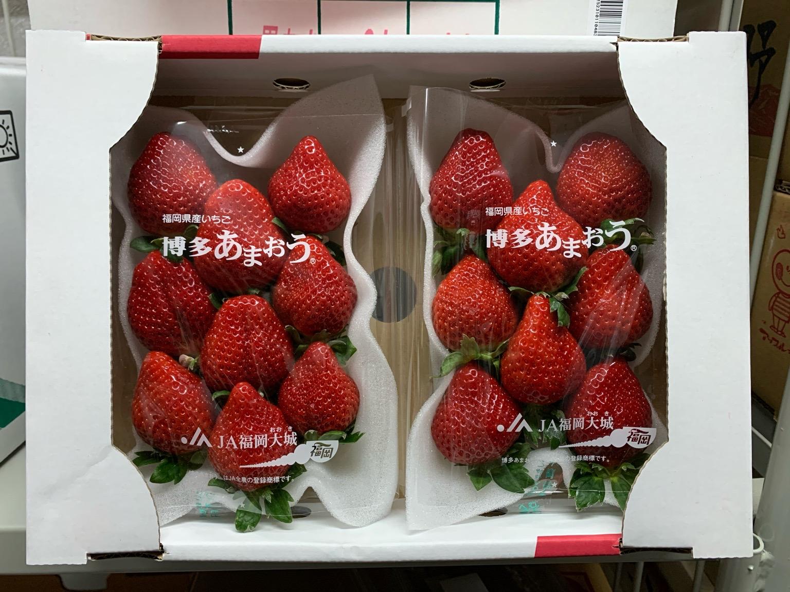 九州福岡縣「甜王」 日本士多啤梨