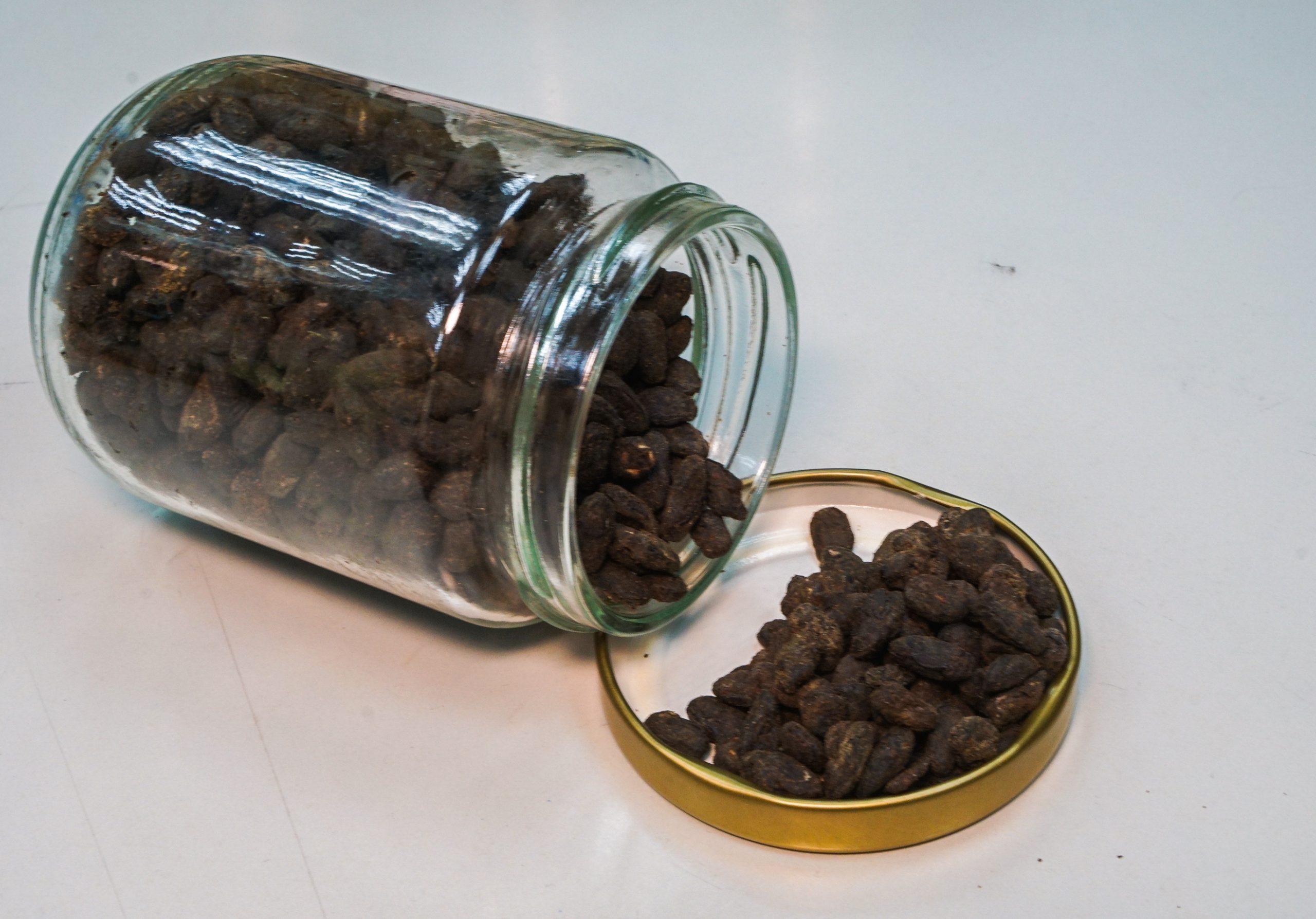 悅和醬園 生曬豉油 古洞工場 有機豆豉