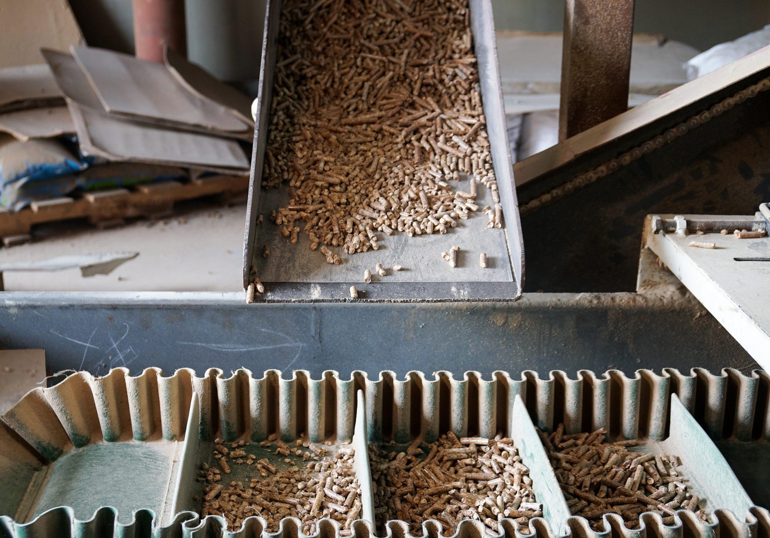 六斗 環保木貓砂 生產線