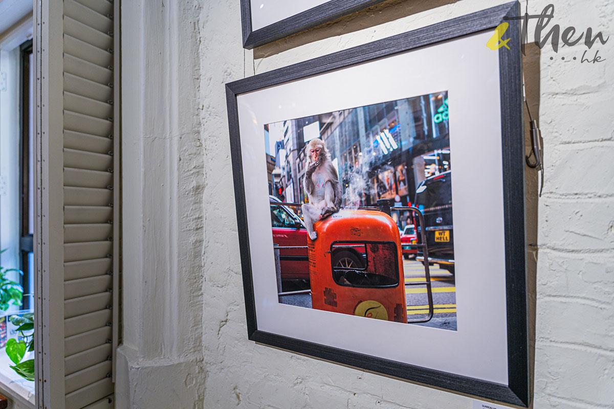 surrealhk Tommy Fung Photoshop 改圖 攝影 個展 猴子 吸煙