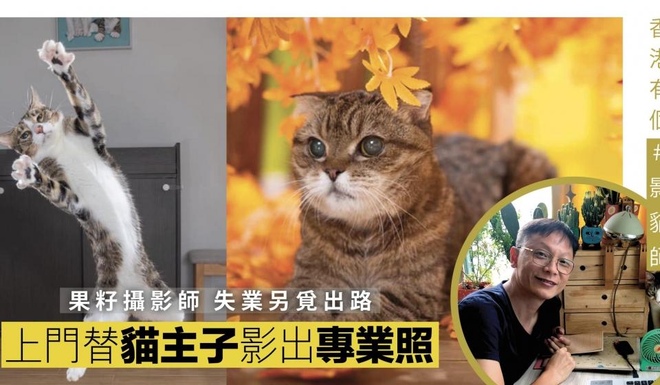 |香港有個 #影貓師|上門寵物攝影師 細細聲  貓唔驚